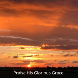 he predestined us for adoption to himself as sons through Jesus Christ, according to the purpose of his will, to the praise of his glorious grace, with which he has blessed us in the Beloved.